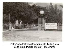 CAMPAMENTO TORTUGUERO