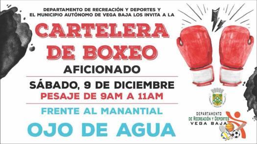 ANUNCIO BOXEO SABADO 9 DIC 2016
